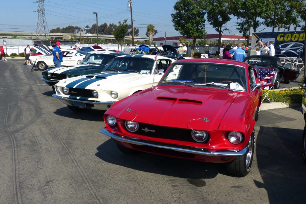 Lots of great early Shelby Mustangs turned out to honor The Man.  Late series '67s seen here.