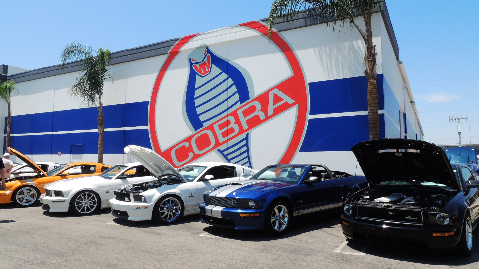 Shelby American gathering, informal car show, and charity toy drive this Saturday, December 14