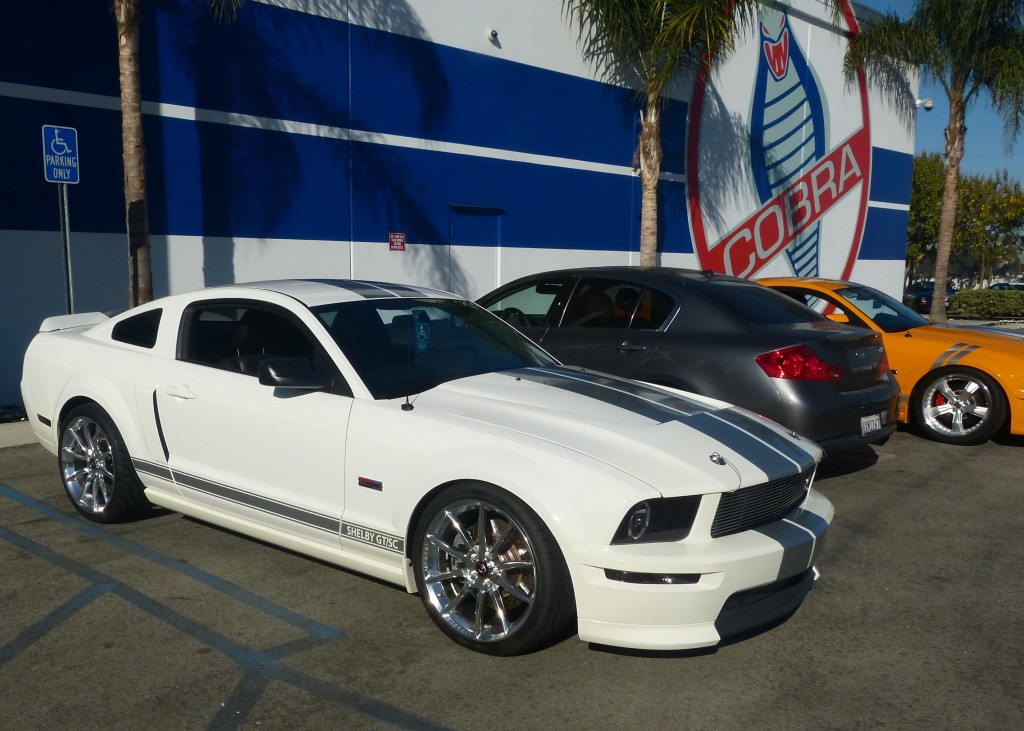 The casual parking lot car show as also spectacular with every year, color and stripe of Shelby Mustang you can imagine