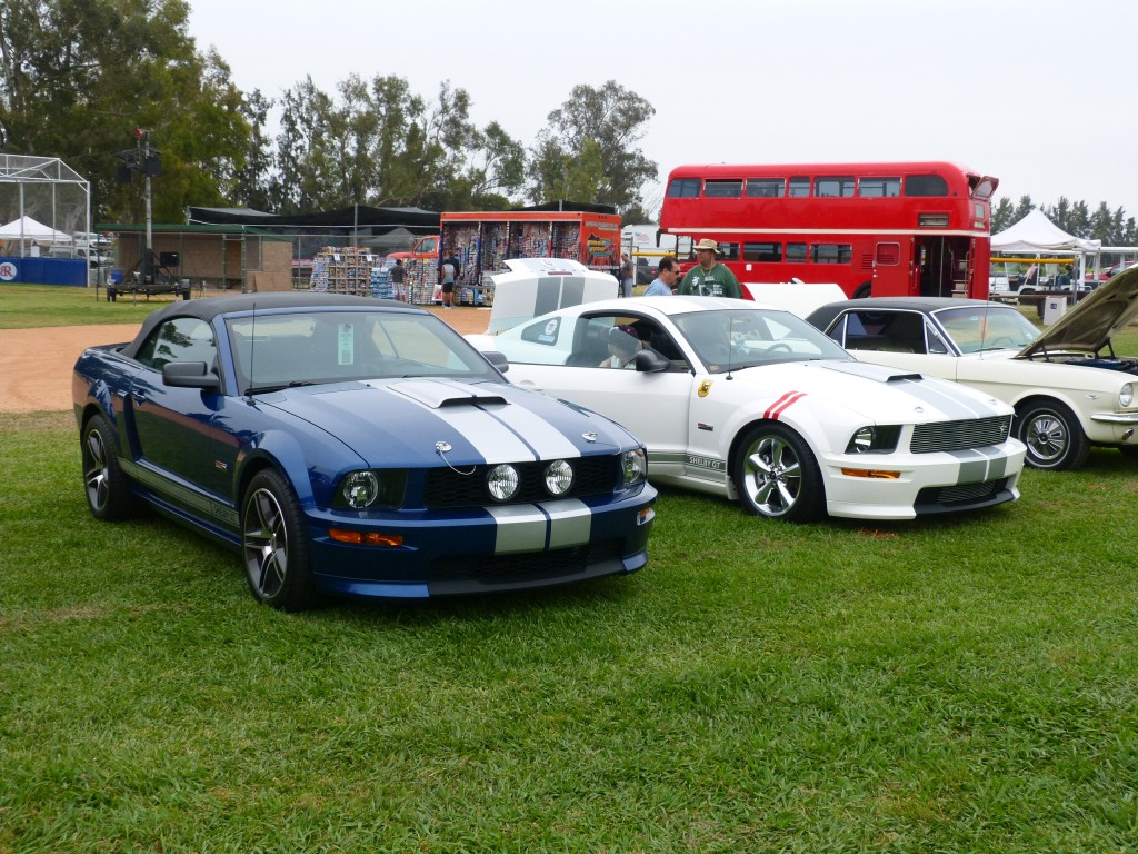 OK, I'll admit it: I brought my own Mustang too.  That's my blue '08 Shelby GT convertible among a long line of late model Shelbys.