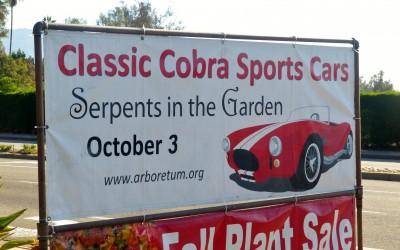 Guest Blog: Serpents in the Garden