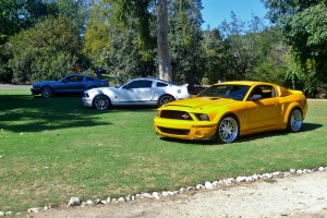 """Shelby Mustangs at a """"Cobra"""" show? Sure why not, at least they are genuine Shelby production automobiles. And there were room for many in this facility's 120+ acres."""