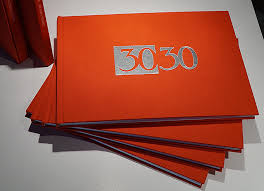 30-30-book-cover