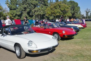 You'd expect a lot of great Alfas at a show featuring Italian hardware, and they were here...