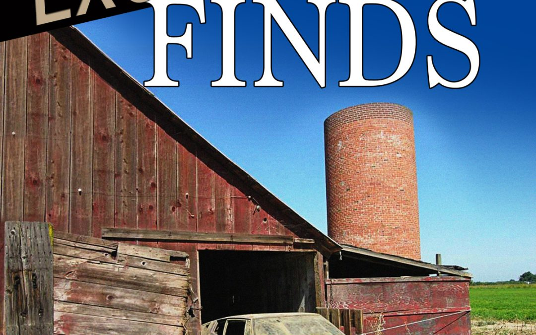 "Super Deep Discount on ""Exotic Barn Finds"" Book"