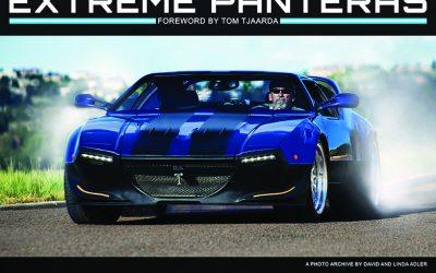 Speed Reading: Extreme Panteras by Linda and David Adler